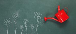 curare un blog è come innaffiare delle piantine