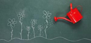 curare la crescita din blog è come innaffiare una piantina