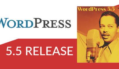 wordpress-5-5-release-novita-problemi-soluzioni
